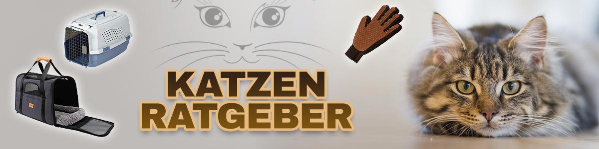 KATZEN RATGEBER